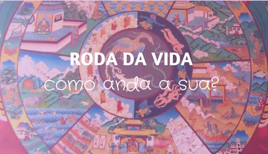 425d10b055e Roda da Vida (com ferramenta pra você baixar!) – Ana Paula Barros